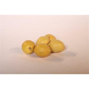 Caisse de Citron