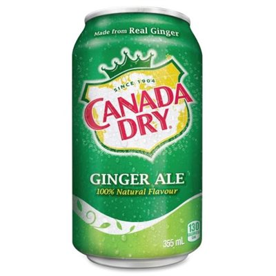 Gingerale canettes 24x355 ml