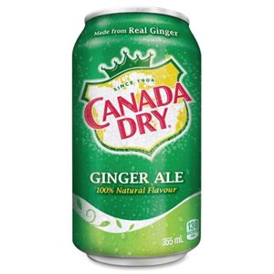 Gingerale cans 24x355 ml