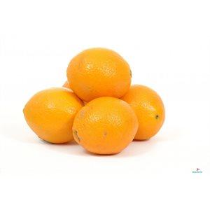Caisse d'Orange